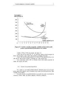 Comerțul Internațional și Concurența Imperfectă - Pagina 5