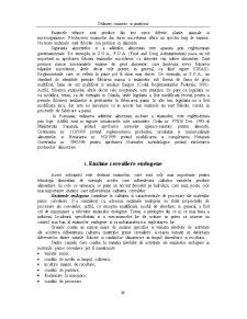 Enzime Utilizate in Panificatie - Pagina 3