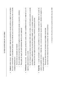 Tehnica Expertizelor Contabile - Pagina 1