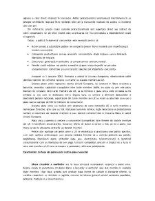 Politicile Comerciale ale Romaniei dupa Aderarea la Uninunea Europeana - Pagina 3