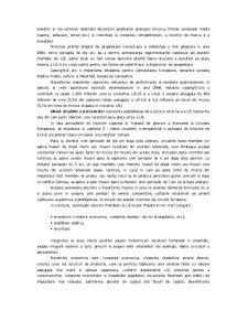 Politicile Comerciale ale Romaniei dupa Aderarea la Uninunea Europeana - Pagina 5