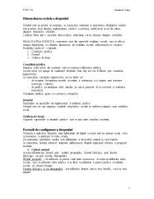 Dimensiunea Sociala a Dreptului - Pagina 1