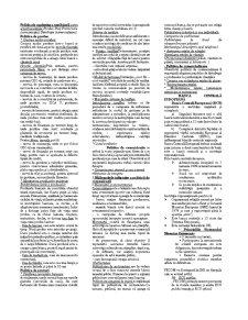 Strategii și Politici Bancare - Pagina 1