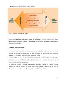 Probe de Audit - Pagina 5