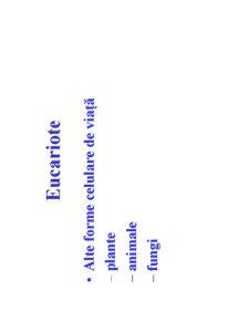 Microbiologie Generala - Curs 2 - Pagina 4