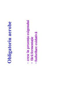 Microbiologie Generala - Curs 3 - Pagina 3