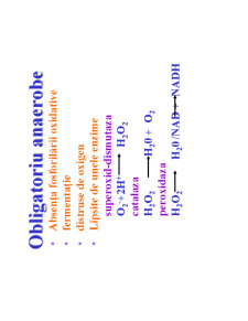 Microbiologie Generala - Curs 3 - Pagina 4