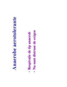Microbiologie Generala - Curs 3 - Pagina 5