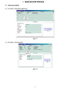 Bază de Date Pontaje - Pagina 1