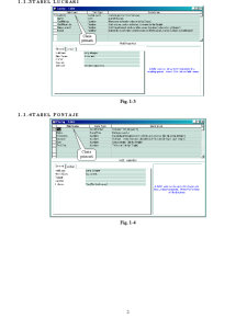 Bază de Date Pontaje - Pagina 2