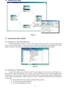 Bază de Date Pontaje - Pagina 3