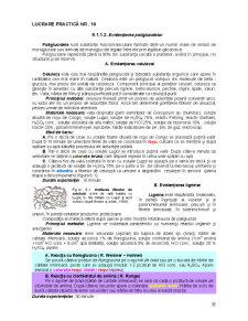 Fiziologie Vegetala Generala - Lucrari Practice - Pagina 5