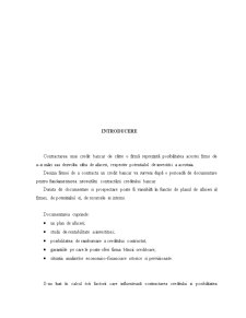 Plan de Afaceri SC Springtrest - Pagina 4