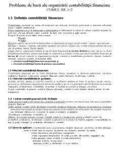 Probleme de Baza - Contabilitate - Pagina 1