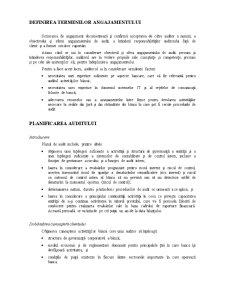 Declarația Internațională privind Practica de Audit 1006 - Pagina 3