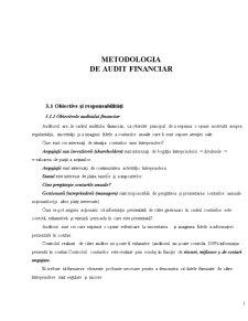 Metodologia Auditului Financiar - Pagina 1