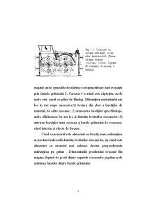 Utilaje si Instalatii pentru Mediu - Pagina 3