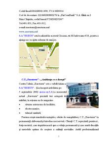 Activitatea Bancara - SC Horus SA - Pagina 2