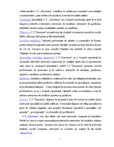 Activitatea Bancara - SC Horus SA - Pagina 3