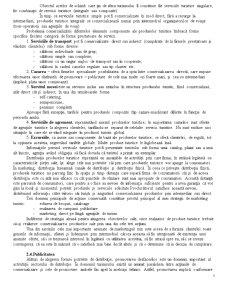 Producerea, Comercializarea Produselor Turistice - Pagina 5