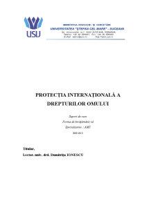 Protecția Internațională a Drepturilor Omului - Pagina 1