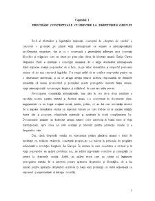 Protecția Internațională a Drepturilor Omului - Pagina 4