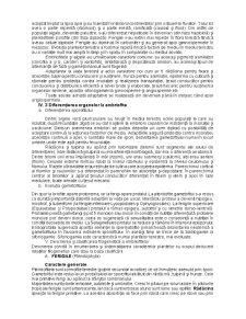 Sistematica Fanerogamelor - Pagina 4