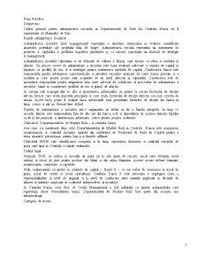 Riscurile Financiar Bancare - Pagina 3