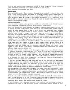 Riscurile Financiar Bancare - Pagina 5