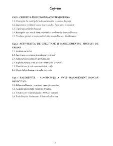 Managementul Activității de Creditare - Pagina 2