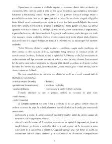 Managementul Activității de Creditare - Pagina 4