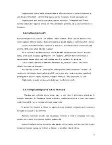 Sisteme de Asigurare a Calitatii - Conservele de Mazare - Pagina 3