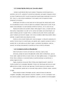 Sisteme de Asigurare a Calitatii - Conservele de Mazare - Pagina 5