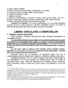 Libera Circulație a Mărfurilor - Pagina 3