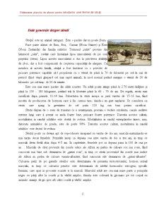 Elaborarea Planului de Afaceri pentru Infiintarea unei Firme de Struti - Pagina 2