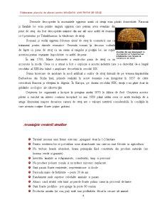 Elaborarea Planului de Afaceri pentru Infiintarea unei Firme de Struti - Pagina 4