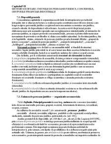 Sisteme Societare. Uniunile de Persoane Juridice, Concernele, Grupurile Financiar-Industriale - Pagina 1