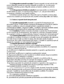 Sisteme Societare. Uniunile de Persoane Juridice, Concernele, Grupurile Financiar-Industriale - Pagina 4
