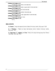 Organizatii si Relatii Internationale - Pagina 4