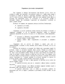 Proiect Didactic - Economia Intreprinderii - Organizarea Procesuala a Intreprinderii - Pagina 5