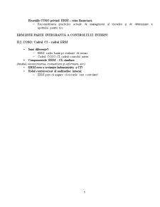 Auditul Controlului Intern - Pagina 5
