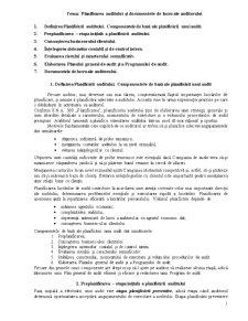 Planificarea Auditului și Documentele de Lucru ale Auditorului - Pagina 1