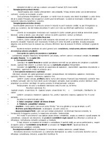 Sisteme Contabile Comparate - Pagina 4