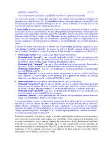 Structuri si Algoritmi pentru Conducerea Automata a Proceselor - Pagina 5