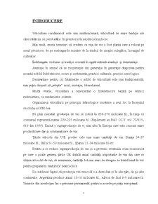 Viticultura Romaneasca - Tehnologia de Cultura a Vitei de Vie si Importanta ei - Pagina 5