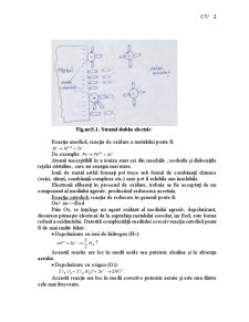 Chimie - Curs 5 - Pagina 2