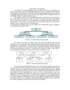 Bază de Date - Pagina 1