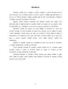 Actele de Expertiza Contabila - Continut si Valorificare - Pagina 3