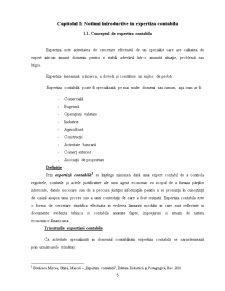 Actele de Expertiza Contabila - Continut si Valorificare - Pagina 4