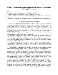 Contabilitate Internationala - Pagina 2